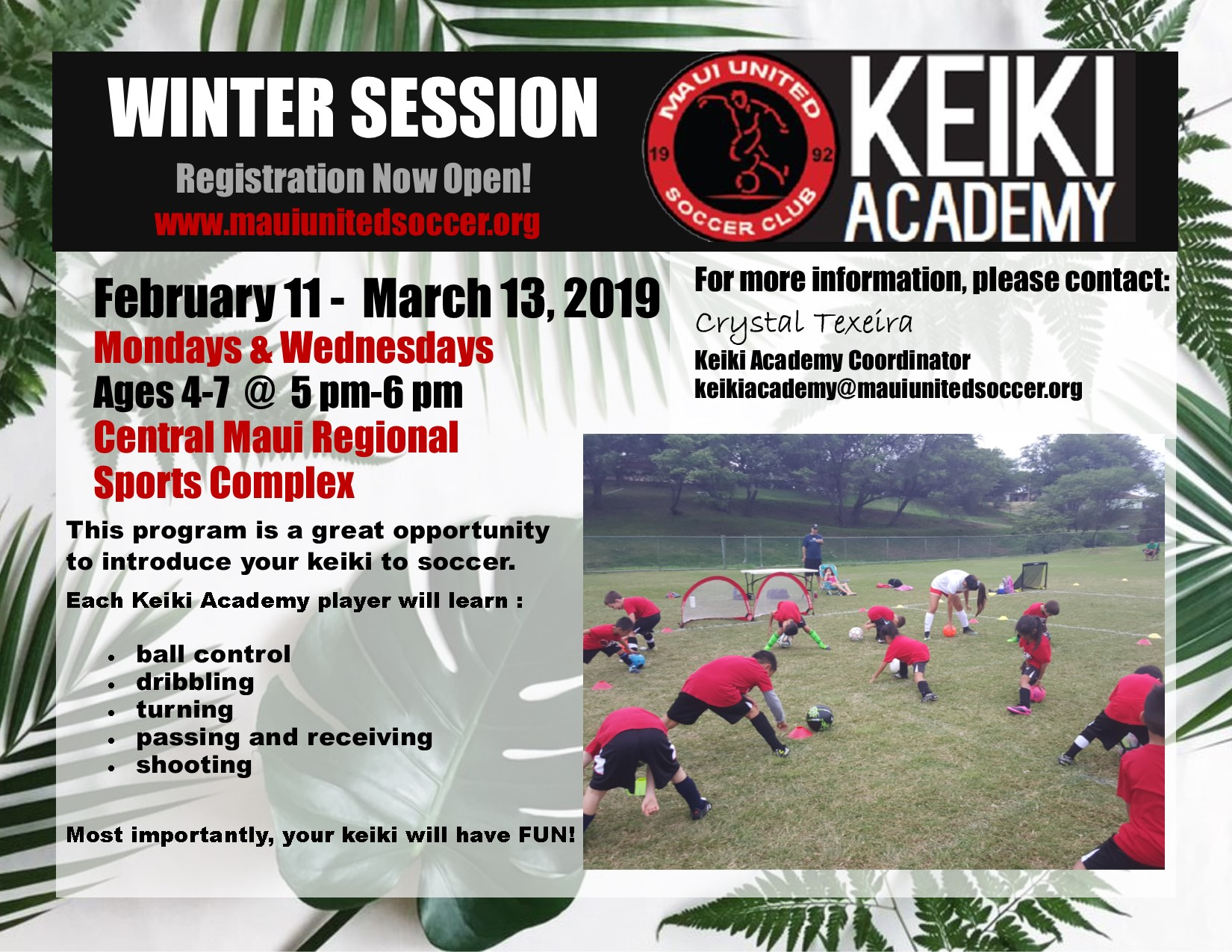 Spring Session          February 11, 2019 - March 13, 2019